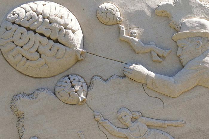 Notre Cerveau: 5 Conditions Pour Réduire Les Erreurs